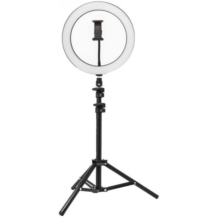 YOU STAR 26cm LED Ring Light & 1.1m tripod   416573